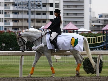 yudoba-111111-wakaba-01