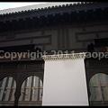 写真: P2880036