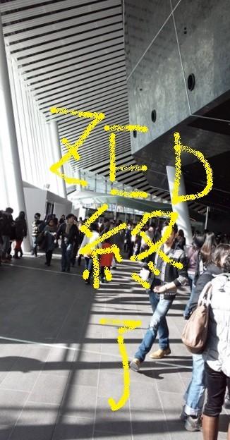 シルク・ドゥ・ソレイユ シアター東京 1