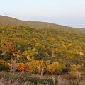 Photos: 岩手県八幡平の紅葉・4