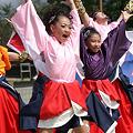 写真: 雅華組_15 - ザ・よさこい大江戸ソーラン祭り2011