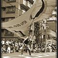 写真: 風来坊_28 - 第8回 浦和よさこい 2011