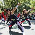 リゾンなるこ会飛鳥 - 第28回「彩夏祭」 関八州よさこいフェスタ 2011