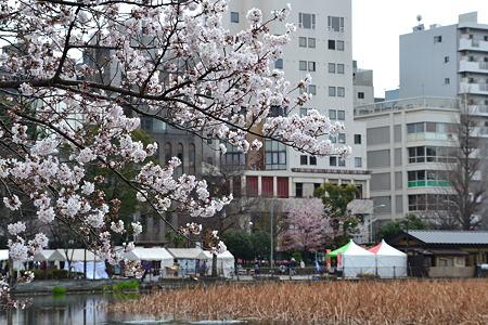 桜と上野の街@不忍池[4/4]