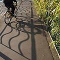 1030_波間を行く自転車