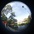 写真: 魚眼 池と空