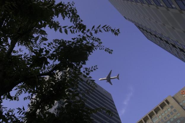 写真: 2011-08-16の空