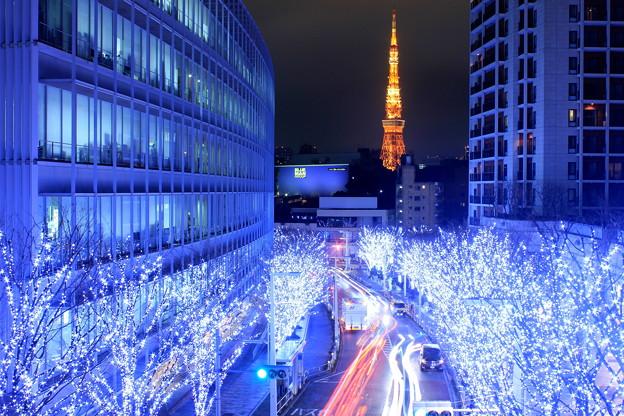 Photos: 幻の雪