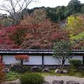 Photos: 福寿院庭園