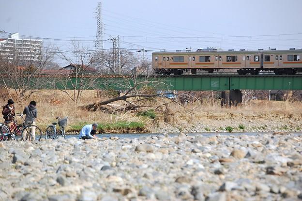 春の河川敷(1)