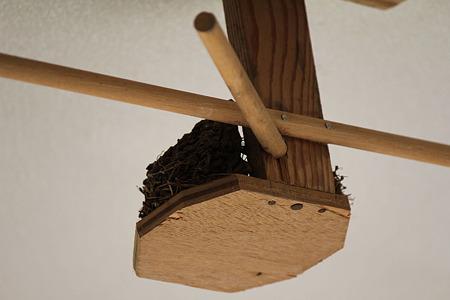 巣に隙間が