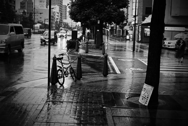 雨の桃太郎大通り