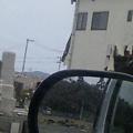 Photos: 奥に見える黒い山。…山じゃないよ?瓦礫って呼ばれちゃう山だよ…  (門脇地区の墓地から日和大橋方面を)
