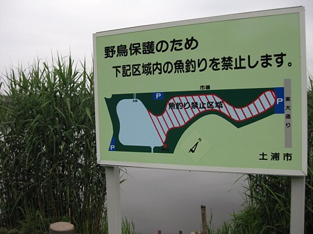 釣り禁止区域