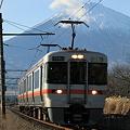 富士山と313系