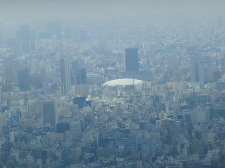 CIMG6542 東京ドームかな?