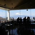 写真: 達磨山カフェから