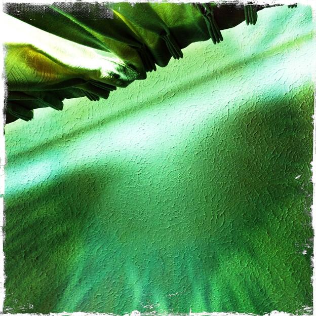 写真: The Green Curtain