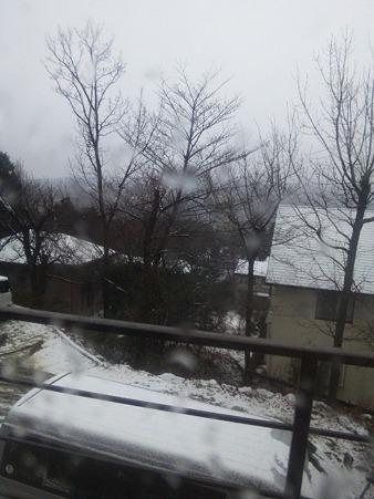 雪だー!!(この後吹雪になります)