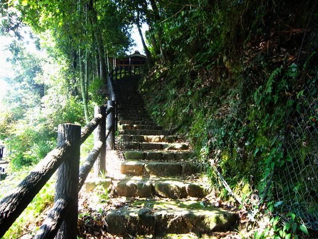 郡上八幡城への道