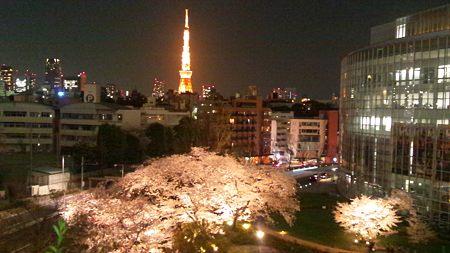 月と東京タワーと夜桜