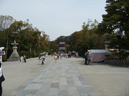 120413-八幡さま (20)