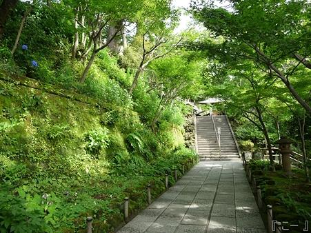 110624-長谷寺 (3)