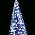 写真: クリスマスのUSJ