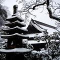 東慶寺書院1-20120229