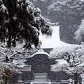 Photos: 円覚寺正続院2-20120229