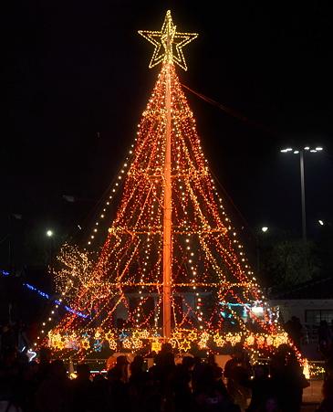 Brightness Tree(1)