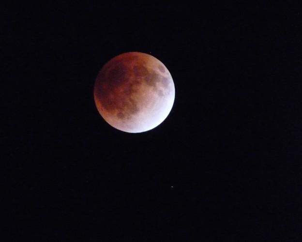 写真: moon