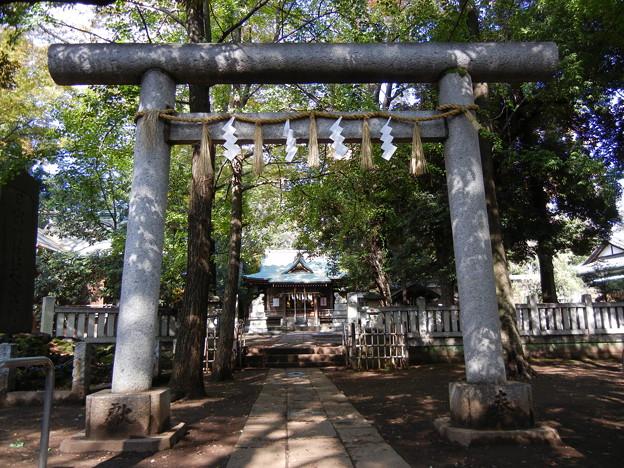 鳥居-氷川神社 (目黒区八雲)