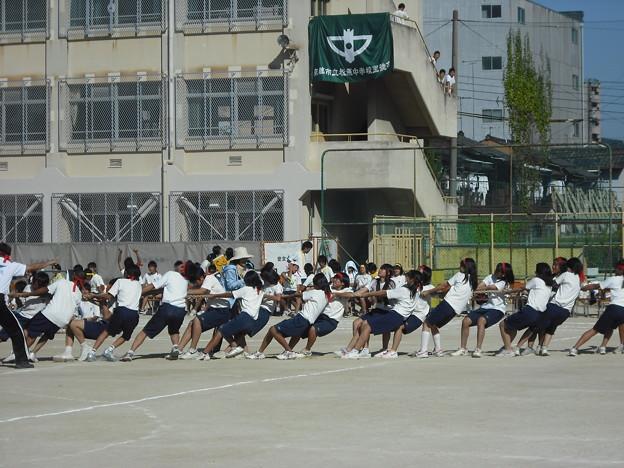 Photos: 体育祭(綱引き)