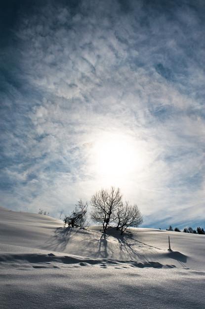 逞しき 冬の下で