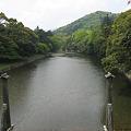 写真: 五十鈴川