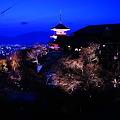 Photos: 京都の夜