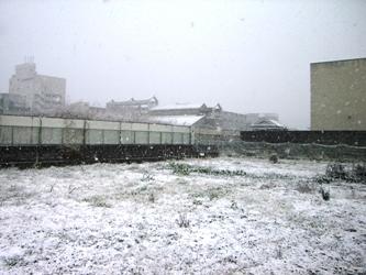 橋本市内の雪