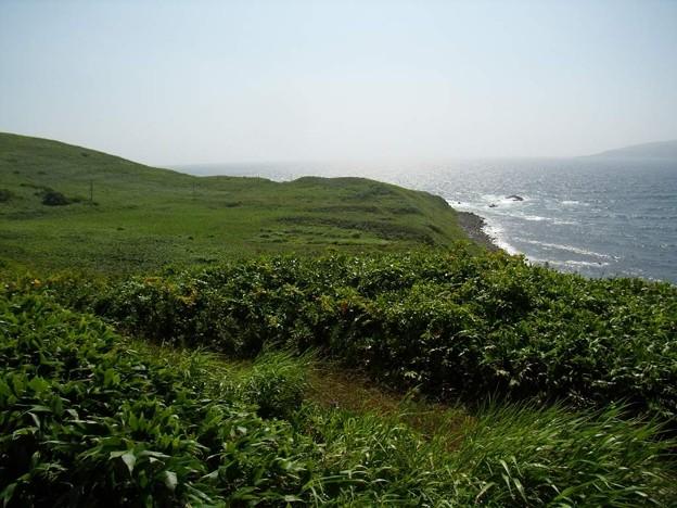 写真: 8_11焼尻島西の端の海岸02