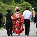 写真: 2012.06.18 三渓園 結婚式