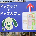 Photos: NEOPASA駿河湾沼津 上り側地図