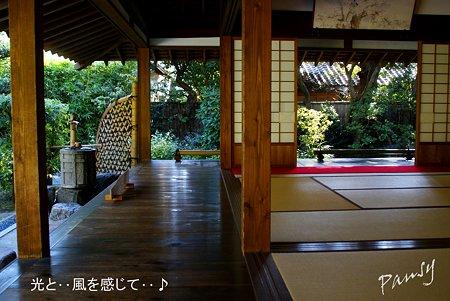 喜泉庵にて・・9