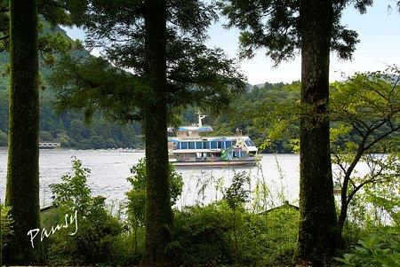 樹林から遊覧船・・