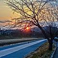 Photos: 岡山後楽園の朝日