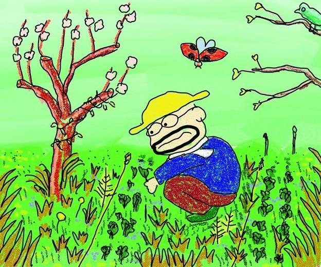 写真: 草ぼうぼう