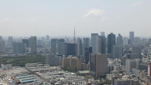 Photos: 今日の東京4/17