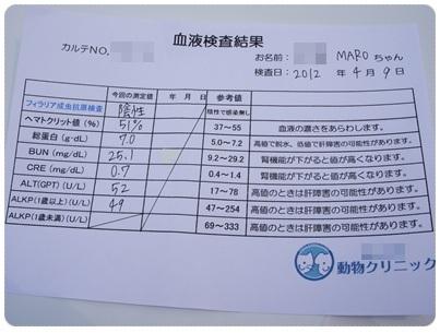 20120409 MARO血液検査 結果