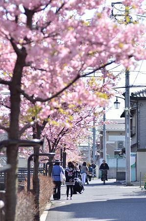 春の路ゆく