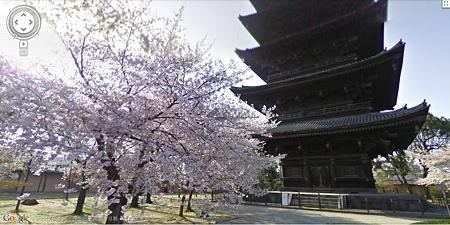又是樱花盛开时,赶紧用GoogleEarth看看实景的日本樱花吧