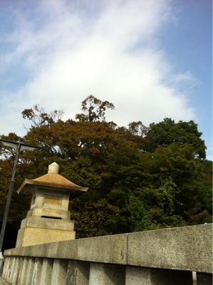 明治神宮に秋近し